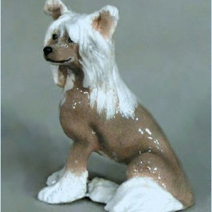 Chinese Crested, Medium Skin