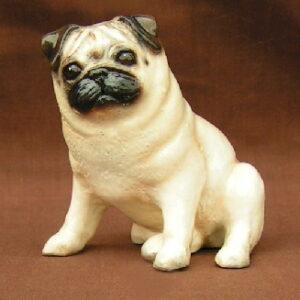 Pug, Fawn