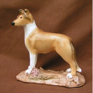 Smooth Collie, Sable